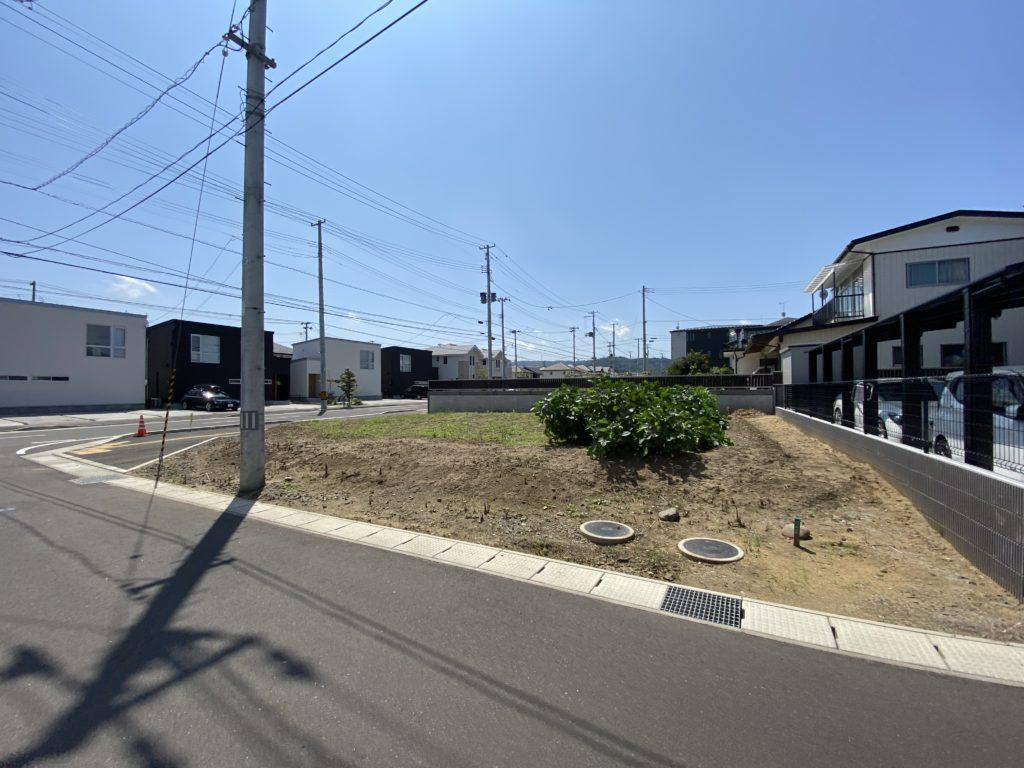 TZT畑の隣に均等区割りされた建売住宅が並ぶ